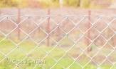 """Забор из оцинк. сетки рабицы 55х55 с установкой монтажом под ключ. Изготовитель в Минске УП """"СтройСетМет"""""""