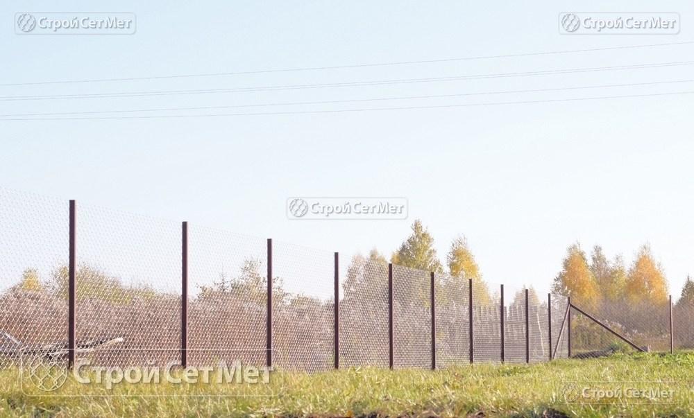 Фото 226. Забор из сетки рабицы 55 мм, толщина 2,5 мм