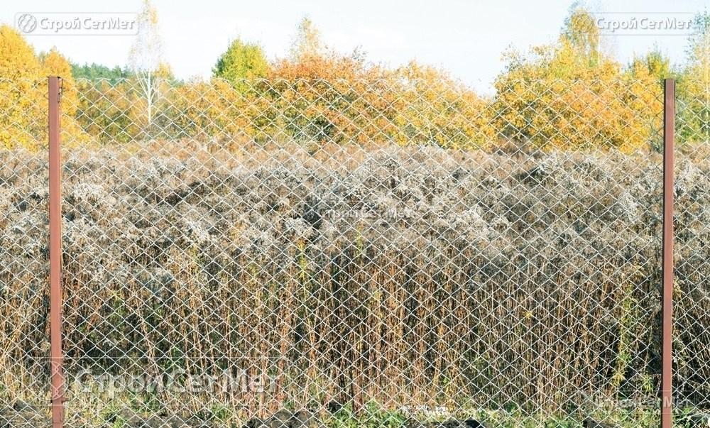 Фото 228. Забор из сетки рабицы 55 мм, толщина 2,5 мм