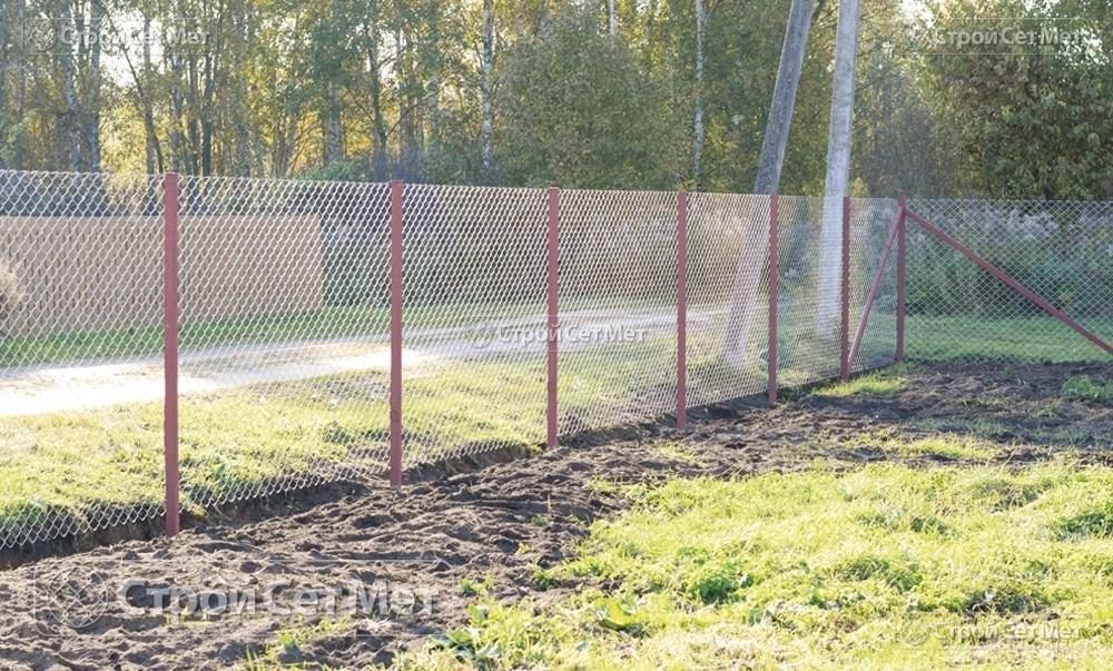 Фото 231. Забор из сетки рабицы 55 мм, толщина 2,5 мм