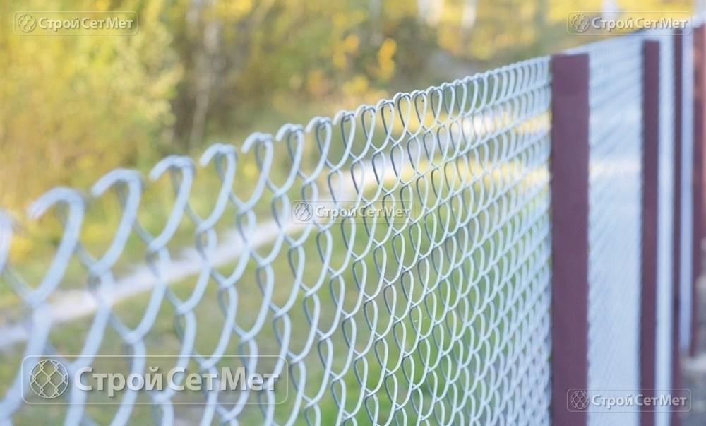 Фото 232. Забор из сетки рабицы 55 мм, толщина 2,5 мм