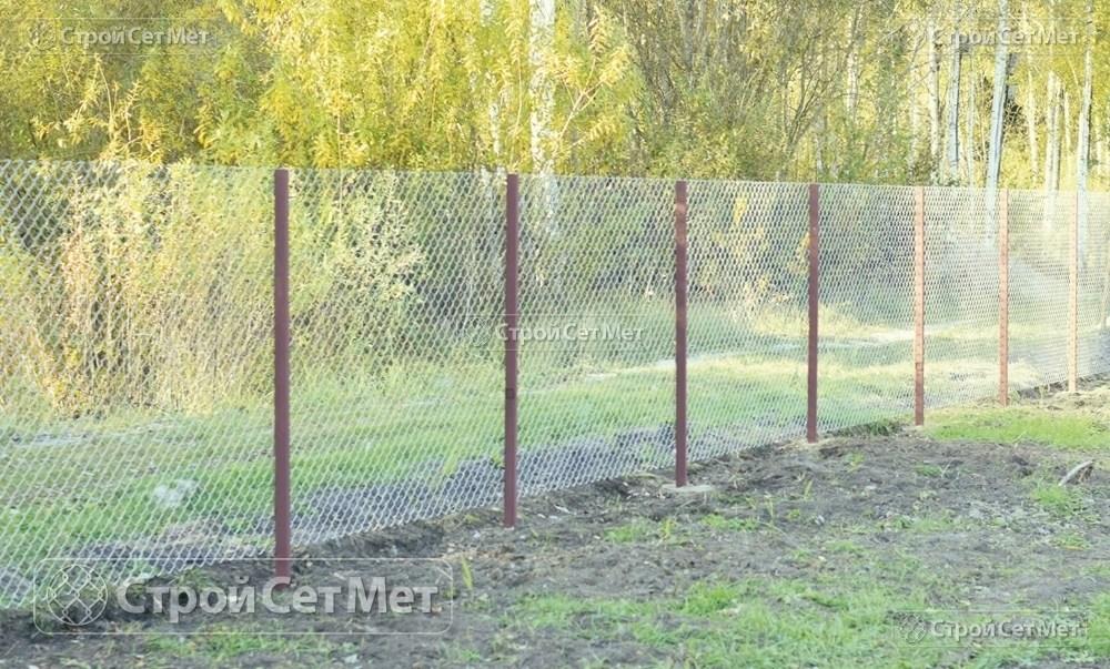 Фото 233. Забор из сетки рабицы 55 мм, толщина 2,5 мм