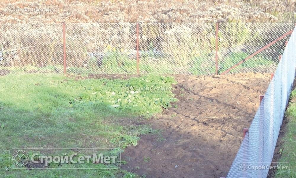 Фото 237. Забор из сетки рабицы 55 мм, толщина 2,5 мм