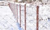 Столбы на заборе для сетки рабицы металлические купить СтройСетМет