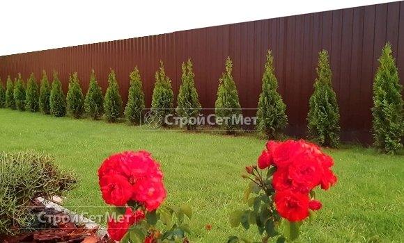 Фото 473. Забор из профлиста профнастила металлопрофиля коричневый 8017