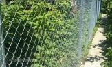 Металлический забор из оцинкованной сетки рабицы купить под ключ, в Минске, невысокая цена с установкой и монтажом