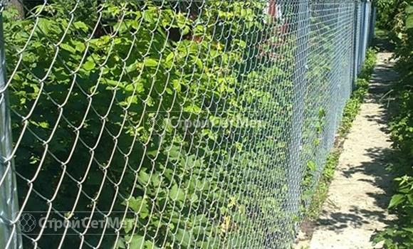 Фото 112. Металлический забор из оцинкованной сетки рабицы купить под ключ, в Минске, невысокая цена с установкой и монтажом