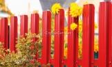 Забор ограждение красное из металлического штакетника фото, забора из евроштакетника, купить заказать под ключ, установка, монтаж
