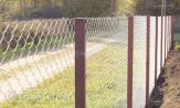 """Забор из оцинкованной сетки рабицы 55х55 цена """"под ключ"""" на заказ с установкой монтажом от УП """"СтройСетМет"""". Звонить в Минске."""