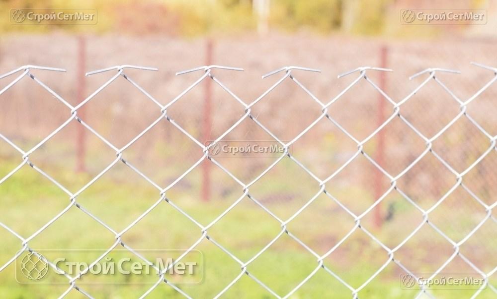 Фото 220. Забор из сетки рабицы 55 мм, толщина 2,5 мм