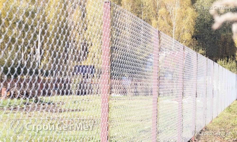 Фото 221. Забор из сетки рабицы 55 мм, толщина 2,5 мм