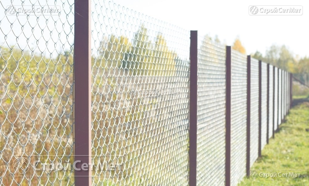 Фото 229. Забор из сетки рабицы 55 мм, толщина 2,5 мм