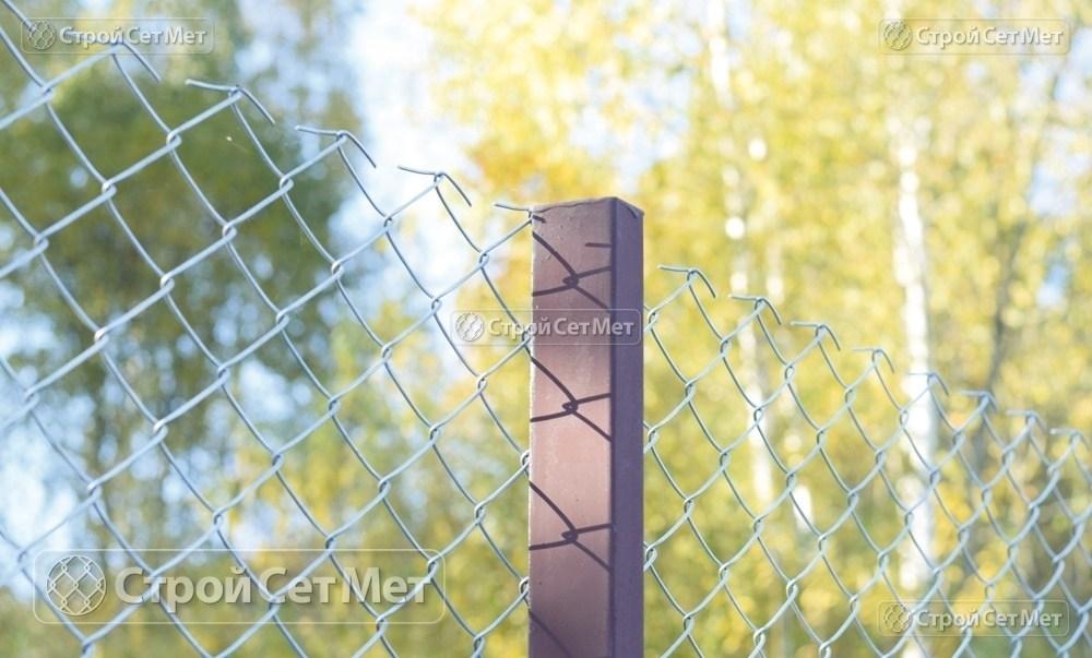 Фото 234. Забор из сетки рабицы 55 мм, толщина 2,5 мм