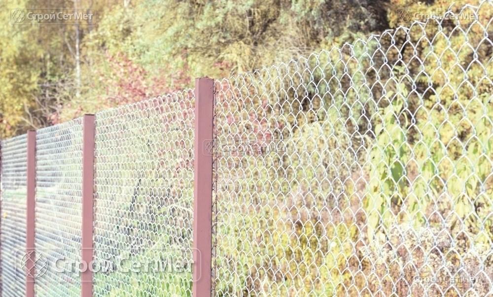 Фото 235. Забор из сетки рабицы 55 мм, толщина 2,5 мм